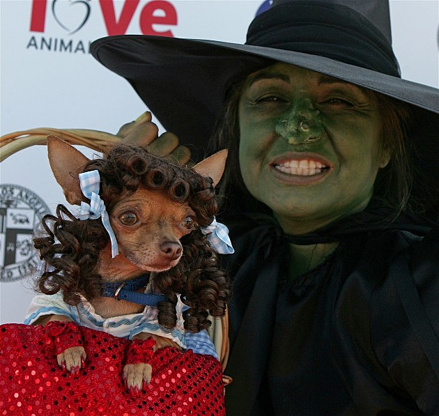 4th Annual Much Love Animal Rescue Bow Wow Ween - Arrivals