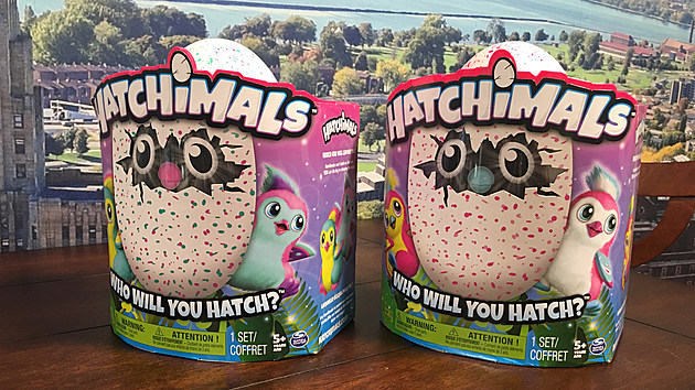 hatchimal-